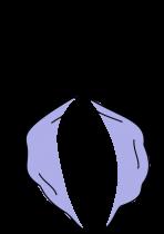 Н-образная пластика половых губ